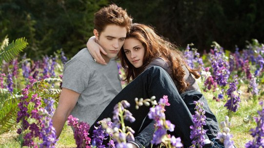 640_Twilight_BreakingDawn_Part2_Summit