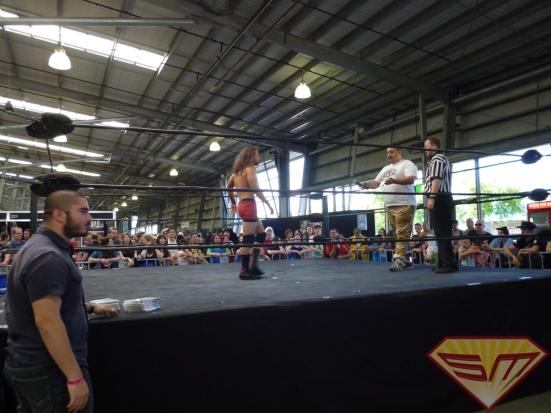 Wrestling 10