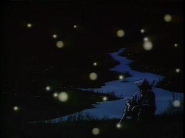 NS7 fireflies