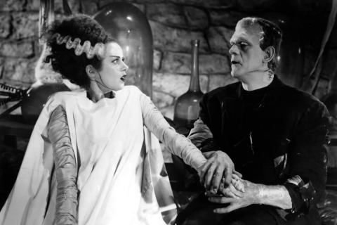 t100_movies_bride-of-frankenstein
