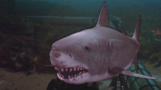 jaws-3-1