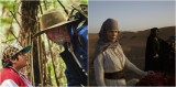 [Video Reviews] Hunt For The Wilderpeople (2016) and Queen Of The Desert (2015) by BedeJermyn