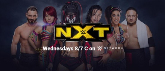 NXT Banner